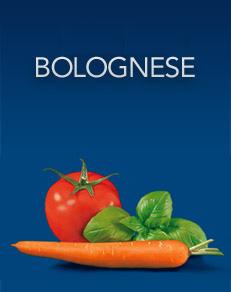 Base Bolognese