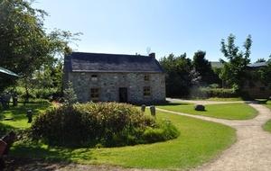 Primavera in Irlanda: Greenan Farm