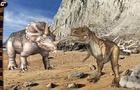 3D Stickers Animati Dinosauri: alla scoperta degli animali della preistoria