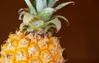 L'ananas non brucia i grassi, ma favorisce la digestione