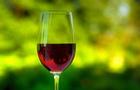 Il vino fa bene, ma senza esagerare!